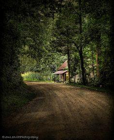 Abandoned little gem on a backwoods dirt road.