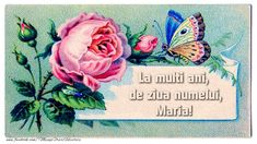 Felicitari de Ziua Numelui - La multi ani, de ziua numelui Maria Diy Flowers, Vintage Flowers, Garden Projects, Diy Projects, Baby Shower Vintage, Rose Images, Wedding Shower Invitations, Graphics Fairy, Calling Cards