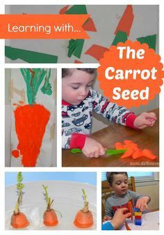 Hands-On Learning with The Carrot Seed | Stir The Wonder #handsonplay #bfair #preschool