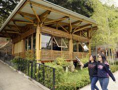 Centro Documental de Bambú Jorge Morán Ubidia, ubicado en la Universidad Católica de Santiago de Guayaquil. Bamboo House Design, Tropical House Design, Bamboo Roof, Bamboo Poles, House In Nature, House In The Woods, Bamboo Building, Bamboo Structure, Bamboo Construction