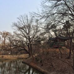 창덕궁 후원 2014.3.15
