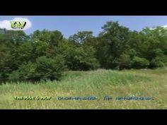 Thijsses Hof - Heemtuin voor Natuur- en Milieu-educatie - YouTube