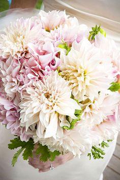 brides of adelaide magazine dahlia wedding flowers bridal bouquets