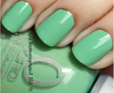 Orly Nail Polishes: Orly Ancient Jade