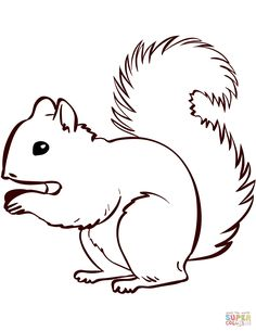 Squirrel coloring page from Squirrels category. Select from 31983 printable crafts of cartoons, nature, animals, Bible and many more. Printable Animals, Printable Crafts, Printables, Squirrel Coloring Page, Squirrel Art, Fall Preschool Activities, Animal Templates, Fall Art Projects, Craft Free