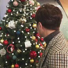 Jin Goo, Christmas Bulbs, Holiday Decor, Christmas Light Bulbs