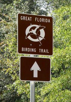 Great Florida Birding Trail, Pasco County, FL