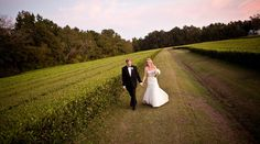 October wedding at the Charleston Tea Plantation