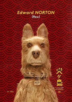 320 Ideas De Perros Famosos Perros Famosos Isla De Perros