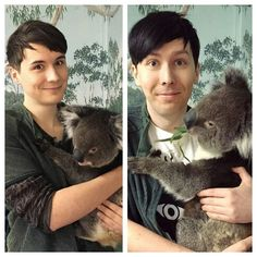 Dan and Phil in Australia!!<< Phil looks so cute with a koala!