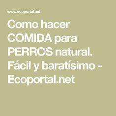 Como hacer COMIDA para PERROS natural. Fácil y baratísimo - Ecoportal.net