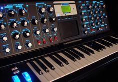 Minimoog Voyager Electric Blue...droool