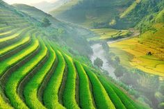 Rice terraces valley @ Mu cang chai by Wanasapong Jaiinpol on 500px