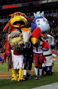 1000+ images about mascots on Pinterest | Baseball mascots ... Hornet Mascot Football