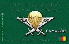 Paracas de Comores