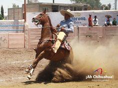 TURISMO EN Chihuahua es uno de los Estados del país donde más se practica la Charrería junto con Jalisco, Guanajuato y San Luis Potosí. Tan solo existen cerca de 15 asociaciones de charros en el Estado, además de ser de los primeros lugares en competencias infantiles a nivel nacional. www.turismoenchihuahua.com