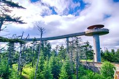 Clingmans-Dome Free Things To Do in Pigeon Forge Tennessee