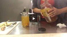Turmeric, ginger and lemongrass kombucha Kombucha Benefits, Fermented Foods, Lemon Grass, Turmeric, Coffee Maker, Herbs, Recipes, Coffee Maker Machine, Coffee Percolator