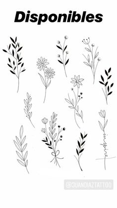 50 Arm Floral Tattoo Designs for Women 2019 - Page 19 of .- 50 Arm Floral Tattoo Designs für Frauen 2019 – Seite 19 von 50 Tattoos for me - Kritzelei Tattoo, Doodle Tattoo, Doodle Drawings, Doodle Art, Tattoo Quotes, Big Tattoo, Eye Drawings, Shape Tattoo, Pencil Drawings
