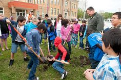Students at McKinley Elementary School celebrate Arbor Day by planting Iowa's state tree, the burr oak.