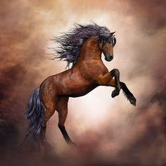 Sonhando, escrevendo e imaginando: Um cavalo sem nome
