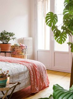 new book, Urban Jungle: living and styling with plants. / @sfgirlbybay