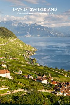 The Wine Place London Lake Geneva, Mountain View, Vacation Destinations, Us Travel, Oeuvre D'art, Travel Guides, Switzerland, Wine, Places