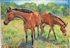 """Original watercolor ACEO size (2.5"""" x 3.5""""), two thoroughbreds I take care of every day"""