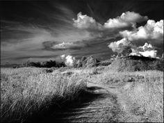 "From Ivan's album:  ""Landscape""http://www.photographytalk.com/photo-galleries/latest-pt-albums?func=viewphoto&id;=103536"