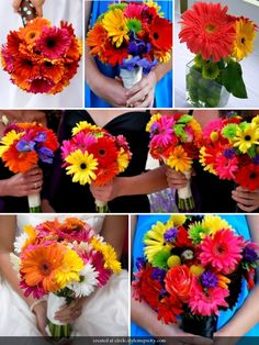gerber daisies--i love the first picture style except in red, white, and black for me and then just red for my girls!