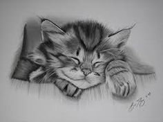 Cat drawing: Cats are the favourite animals among artists as they are beautifully proportioned. It's so easy to learn how to draw cats in a cartoony and realistic style. Kitten Drawing, Cute Cat Drawing, Rabbit Drawing, Realistic Drawings, Easy Drawings, Animal Drawings, Pencil Drawings, Animal Gato, Dibujos Cute