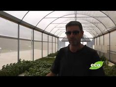 Dr Wilson on Aquaponics