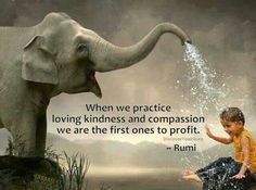When we practice loving kindness and compassion, we are the first to profit - #Rumi