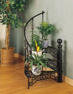 AtHomeMart Garden District Black and Gold Stairway Plant Stand House Plants Decor, Plant Decor, Indoor Plant Shelves, Corner Plant, Wrought Iron Decor, Best Indoor Plants, Indoor Planters, Indoor Gardening, Iron Furniture