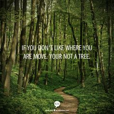 If you dont like where you are move.  Your not a tree.