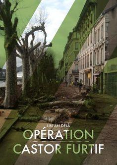"""Hommage à l'opération """"Castor furtif"""" programmée en secret un matin de janvier 2012. Comme si l'on avait voulu tronçonner les platanes au réveil, avant qu'ils ne puissent réagir."""