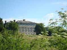 Sharpham Trust for mindfulness retreats, courses & outdoor learning Mindfulness Retreat, South Devon, Romantic Honeymoon, Outdoor Learning, Call Her, Dates, Bathing, Wedding Venues, River