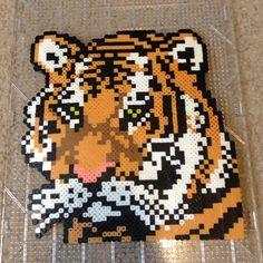 Tiger perler bead art by ltl03