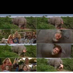 """Ace Ventura: When Nature Calls """"Look, the mother Rhino is giving birth!"""" Eloise loved this, she would laugh so much. Jim Carey Funny, Ace Ventura Memes, Ace Ventura Pet Detective, Great Movies, Awesome Movies, Favorite Movie Quotes, Funny Scenes, Jim Carrey, About Time Movie"""