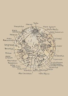 Map of the Moon  Lunar Surface Astronomy by TheCuratorsPrints
