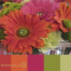 pink, orange, green gerbs palette