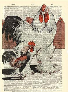 https://www.etsy.com/es/listing/181374887/gallos-diccionario-lamina-vintage?ref=related-6