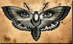 Butterfly Eyes by Thea Fear Blue Eyed Insect Surreal Canvas Art Print moodswingsonthenet Band Tattoos, Hot Tattoos, Girl Tattoos, Small Tattoos, Sleeve Tattoos, Tatoos, Bodysuit Tattoos, Ojo Tattoo, Tattoo Dotwork