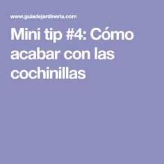 Mini tip #4: Cómo acabar con las cochinillas