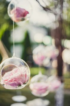 Single roses hanging in glass orbs... romantic DIY ceremony backdrop! Image: Bonnallie Brodeur Photographe