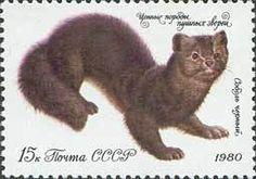 Znaczek: Black Sable (ZSRR) (Valuable species of fur-bearing animals) Mi:SU 4972
