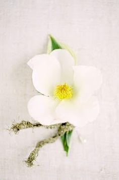 White Flower Wedding Boutonniere #white #flower #boutonniere
