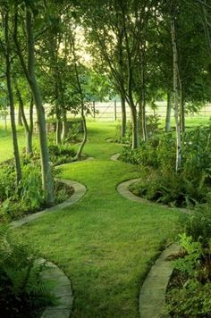 Wonderful Evergreen Grasses Landscaping Ideas 17