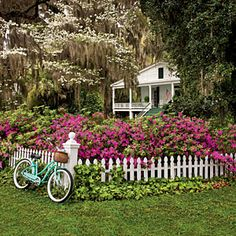 Easy-Growing Flowers for Fences | Easy Growing | SouthernLiving.com