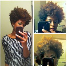 a fuller fro and tapered cut once it has grown out. Love Hair, Big Hair, Tapered Natural Hair Cut, Curly Hair Styles, Natural Hair Styles, Natural Afro Hairstyles, Hair Affair, Natural Hair Inspiration, Textured Hair